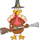 Pilgrim Turkey Bird Character With A Musket. Pilgrim Turkey Bird Cartoon Character With A Musket Stock Photo