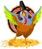 Pilgrim Turkey Stock Images