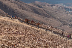 Pilgrims descending from the Sinai mount, Egypt Stock Photo
