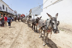 Pilgrims with a donkey cart in El Rocio, Spain Stock Images