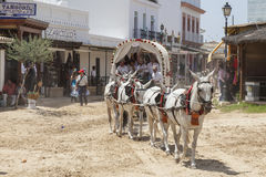Pilgrims with a donkey cart in El Rocio, Spain Stock Photo