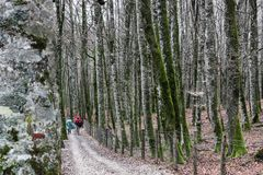 Pilgrims on the french way of Camino de Santiago, Spain. stock photography