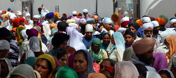 Pilgrims go to the Golden Temple. Punjab, India Royalty Free Stock Photography