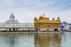 Pilgrims at the Golden Temple, the holiest Sikh gurdwara in the world. Royalty Free Stock Photo