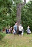 Pilgrims at healing cedar. Stock Photo