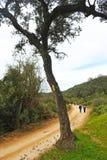 Pilgrims in the Mozarabic Camino de Santiago, Cerro Muriano, Province of Cordoba, Andalusia, Spain Stock Photos