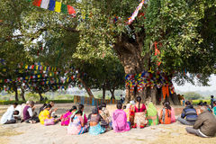 Pilgrims praying under Bodhi tree in Lumbini, Nepal Stock Photography