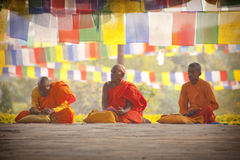 Pilgrims visit the birthplace of Buddha Royalty Free Stock Photography