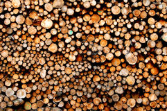 Pilha da biomassa Fotos de Stock