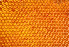 Pilha da cera do favo de mel fotos de stock