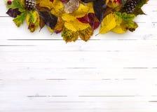 Pilha da folha da queda no fundo de madeira imagem de stock