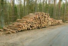 Pilha da madeira Foto de Stock Royalty Free