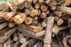 Pilha da madeira cortada da madeira para construções da construção Fotografia de Stock
