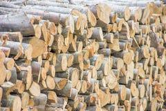 Pilha da madeira desbastada Fotos de Stock Royalty Free