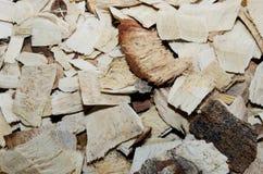 pilha da madeira-microplaqueta Fotografia de Stock