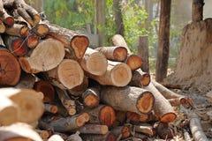 Pilha da madeira para a lenha fotografia de stock