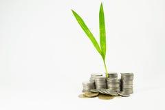 Pilha da moeda ao salvamento Imagem de Stock