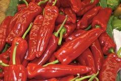 Pilha da pimenta vermelha Imagem de Stock Royalty Free