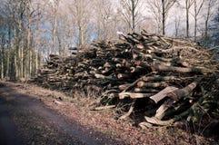 Pilha da queimadura Fotografia de Stock Royalty Free