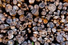 Pilha da queimadura Fotos de Stock
