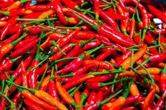 Pilha da textura vermelha fresca das pimentas Fundo cru do alimento Fim acima fotografia de stock royalty free