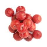 Pilha das ameixas vermelhas múltiplas isoladas Fotos de Stock Royalty Free