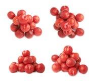 Pilha das ameixas vermelhas múltiplas isoladas Fotografia de Stock