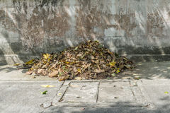 Pilha das folhas de outono fotos de stock royalty free