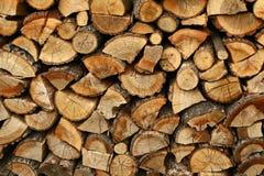 Pilha de árvores cortadas Imagem de Stock