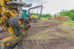 Pilha de árvores empilhadas com máquinas grandes e equipamento de registro do regulador Knowles State Forest em Wisconsin do nort imagens de stock