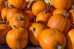 Pilha de abóboras da laranja da colheita fotografia de stock royalty free