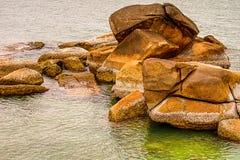 Pilha de algas castigados pelo mau tempo marrons escuras e de escudos das grandes pedras entre o mar aberto foto de stock royalty free