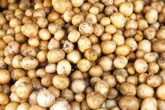 Pilha de batatas novas, imagem de stock