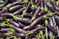 Pilha de beringelas maduras Imagem de Stock