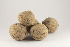Pilha de bolas gordas para alimentar pássaros selvagens Foto de Stock Royalty Free