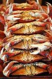 Pilha de caranguejos Foto de Stock