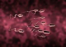 Pilha de esperma Imagens de Stock Royalty Free
