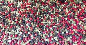 Pilha de grãos de pimenta coloridos Fotos de Stock