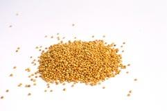 Pilha de grões cruas inteiras do Quinoa Fotos de Stock Royalty Free