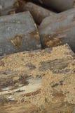 Pilha de lenha seca imagem de stock