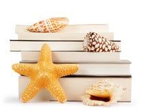 Pilha de livros e de conchas do mar fotos de stock