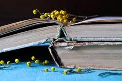 A pilha de livros gastos velhos com mimosa amarela floresce Fotos de Stock