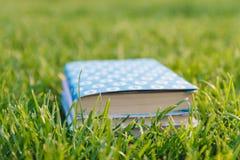 Pilha de livros na grama Imagem de Stock Royalty Free