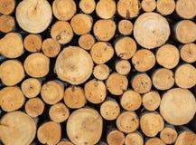 Pilha de log de madeira visto fotografia de stock