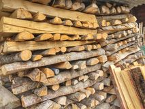 Pilha de logs da madeira serrada Imagem de Stock