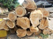 Pilha de logs de madeira Imagem de Stock