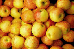 Pilha de maçãs maduras Imagem de Stock