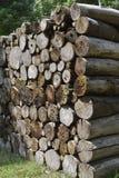 Pilha de madeira Fotografia de Stock Royalty Free