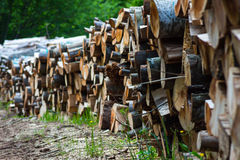 Pilha de madeira 4 Imagens de Stock Royalty Free