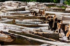Pilha de madeira 1 Foto de Stock Royalty Free
